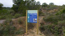 Acción C1 – Trabajos de aclarado del pinar en hábitat de Tetraclinis articulata